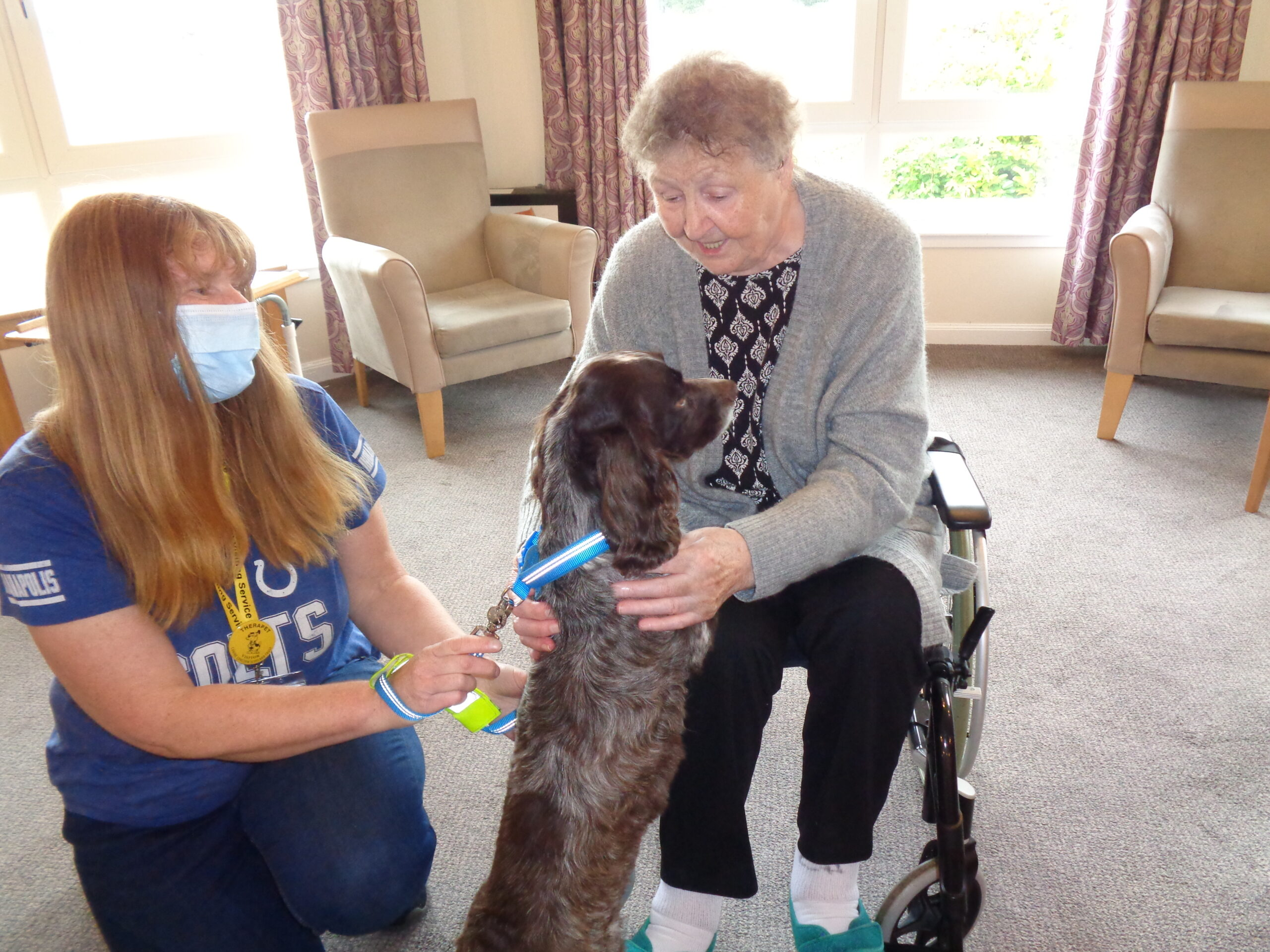 Unleashing the joy of a pet dog therapy visit